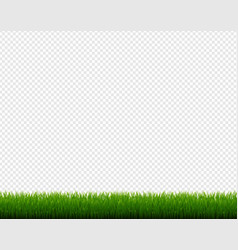 green grass frame isolated transparent background vector image