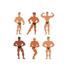 Mens physics bodybuilders vector image