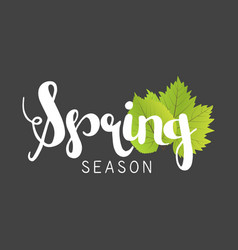 Spring season letter and green leaves vector