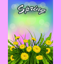 Springtime on background vector