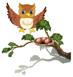 An owl watching the eggs at the branch of a tree vector image vector image
