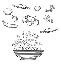 Cooking fresh healthy vegetarian salad sketch vector