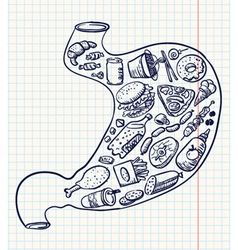 stomach full of fast food doodle version vector image