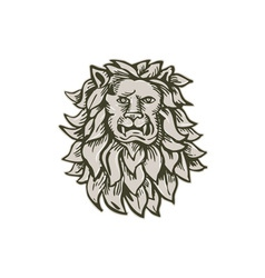 Angry Lion Big Cat Head Etching vector