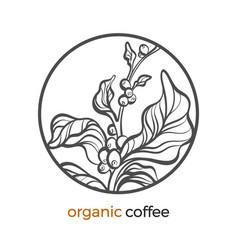 Coffee branch circle logo 2 vector