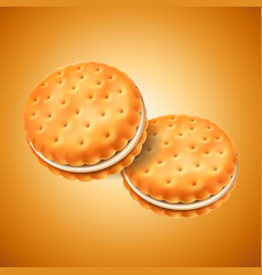 detailed sandwich cookies or crackers with cream vector image
