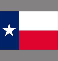Flag of texas usa vector