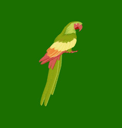 flat shading style icon parrot vector image