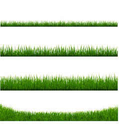 Green grass frame set and isolated white vector