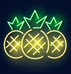 pineapple neon light icon luminous sign vector image