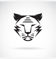 tiger face design on white background wild vector image
