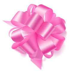 big bow made of ribbon vector image