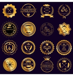 collection vintage round golden badges vector image