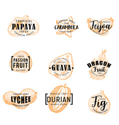 exotical fruits and tropical berries lettering vector image