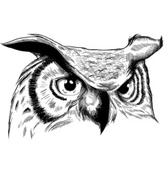 Owl - icon design on white vector