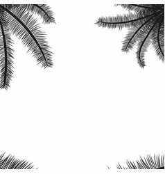 palm leaves black silhouettes tropical palm vector image