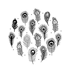 peacock feather set for your design vector image