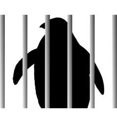 Penguin in zoo vector image