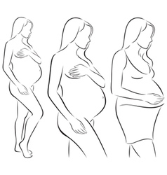 Silhouettes of pregnant woman vector