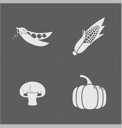 white vegetable icon set on grey background vector image vector image