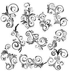 abstract elegant curly set vector image