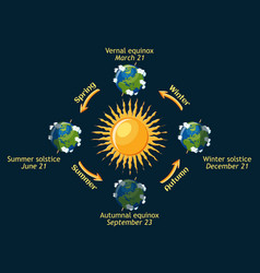 cycle of earth seasons of the year autumnal and vector image