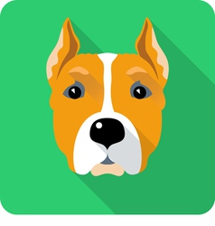 Dog American Staffordshire Terrier vector