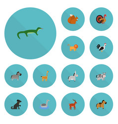 Flat icons horse reptile chipmunk and other vector
