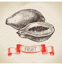 Hand drawn sketch fruit papaya Eco food vector