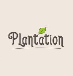 Plantation word text typography design logo icon vector