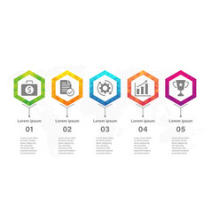 timeline infographic design template with hexagon vector image