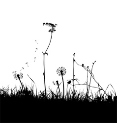 wild weeds and flower silhouettes vector image