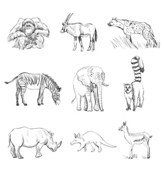 Character design Set of animals silhouettes vector image vector image