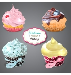 Set of delicious cupcakes with different toppings vector image vector image
