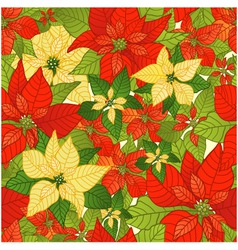Seamless background with red and yellow Poinsettia vector image