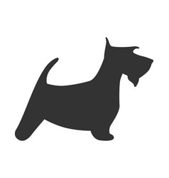 scotch terrier silhouette dog puppy breed simple vector image