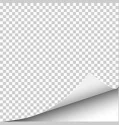 sheet transparent paper vector image