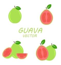 flat Guava icons set vector image