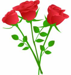 bouquet of three red rose vector image vector image