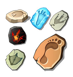 A set of footprints of fossil animals and man vector