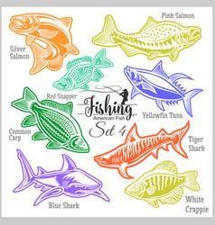 American fish - set 4 for creative design vector