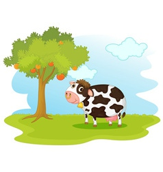 Cow in a field vector