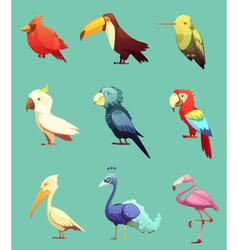 Exotic Tropical Birds Retro Icons Set vector image