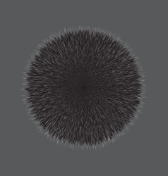 Grey fluffy hair ball vector