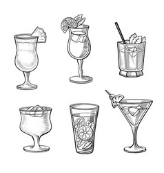 set of alcoholic cocktails vector image