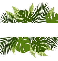 Tropical leaves background with white banner vector image
