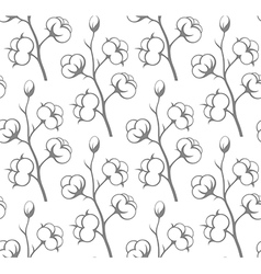 Seamless pattern Cotton vector image vector image