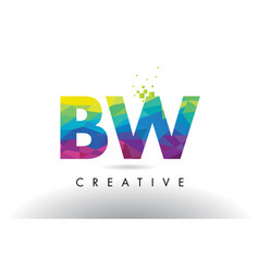 Bw b w colorful letter origami triangles design vector