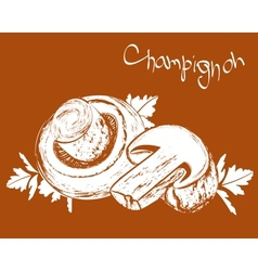 champignons field mushrooms vector image