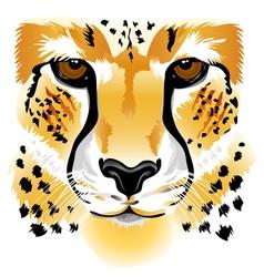 Cheetah face vector image